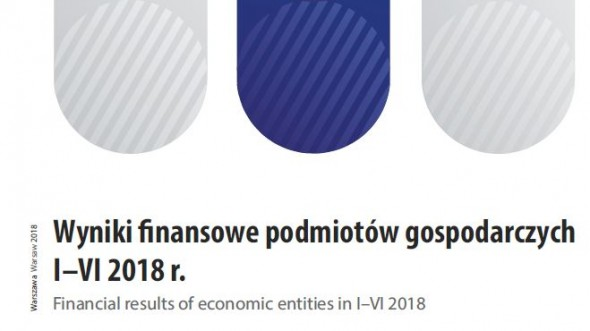 Financial results of economic entities in I–VI 2018